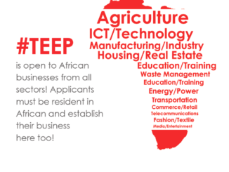 Tony Elumelu Entrepreneurship Program (TEEP) 2017